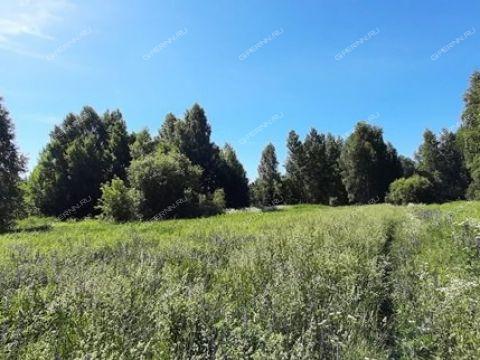 derevnya-krasnaya-sloboda-gorodskoy-okrug-bor фото