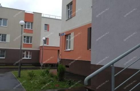 2-komnatnaya-poselok-novinki-bogorodskiy-rayon фото