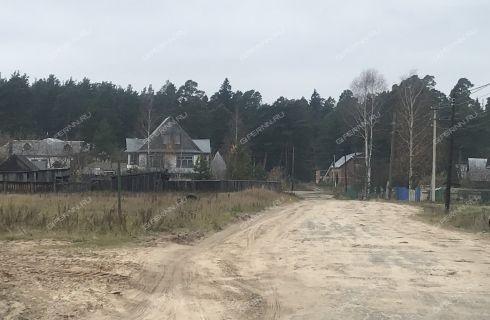 dom-selo-pustyn-arzamasskiy-rayon фото